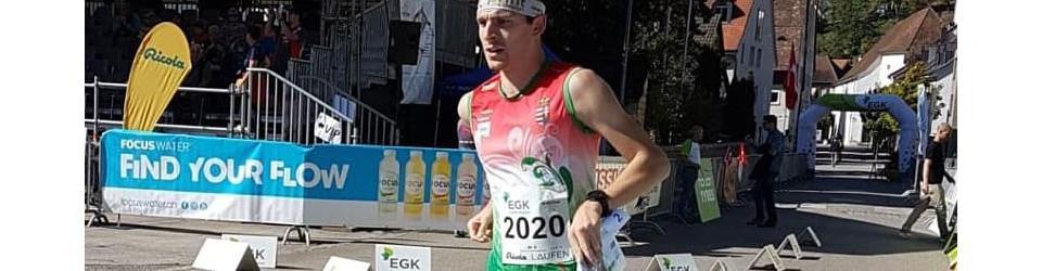 Csaba Gerber